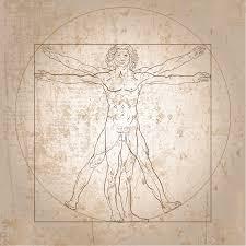 vitruvian body